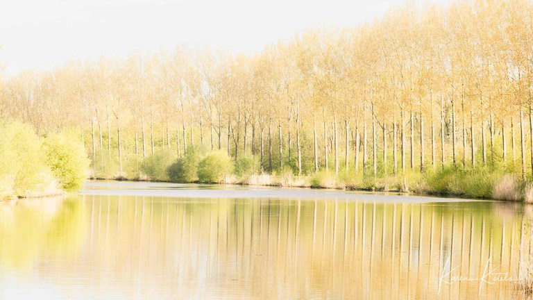 Spring in the Flemish Ardennes at the Scheldt by Karen Ketels