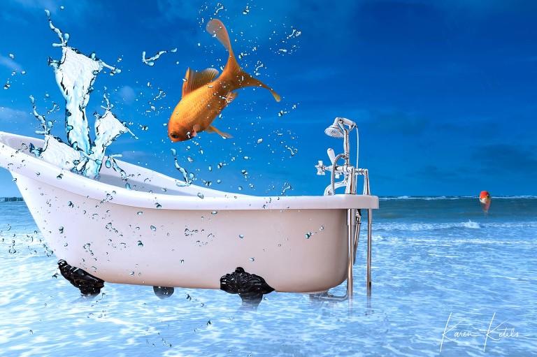 Conceptuele fotografie, prvivéfeestje waarin een goudvis zich te pletter amuseert in een badkuip op het strand, en niet door heeft dat zijn wereld veel groter kan zijn - Conceptual art; private party. A goldfish is having a splendid time in a bathtop at the seaside, not realising there is a far bigger world around him