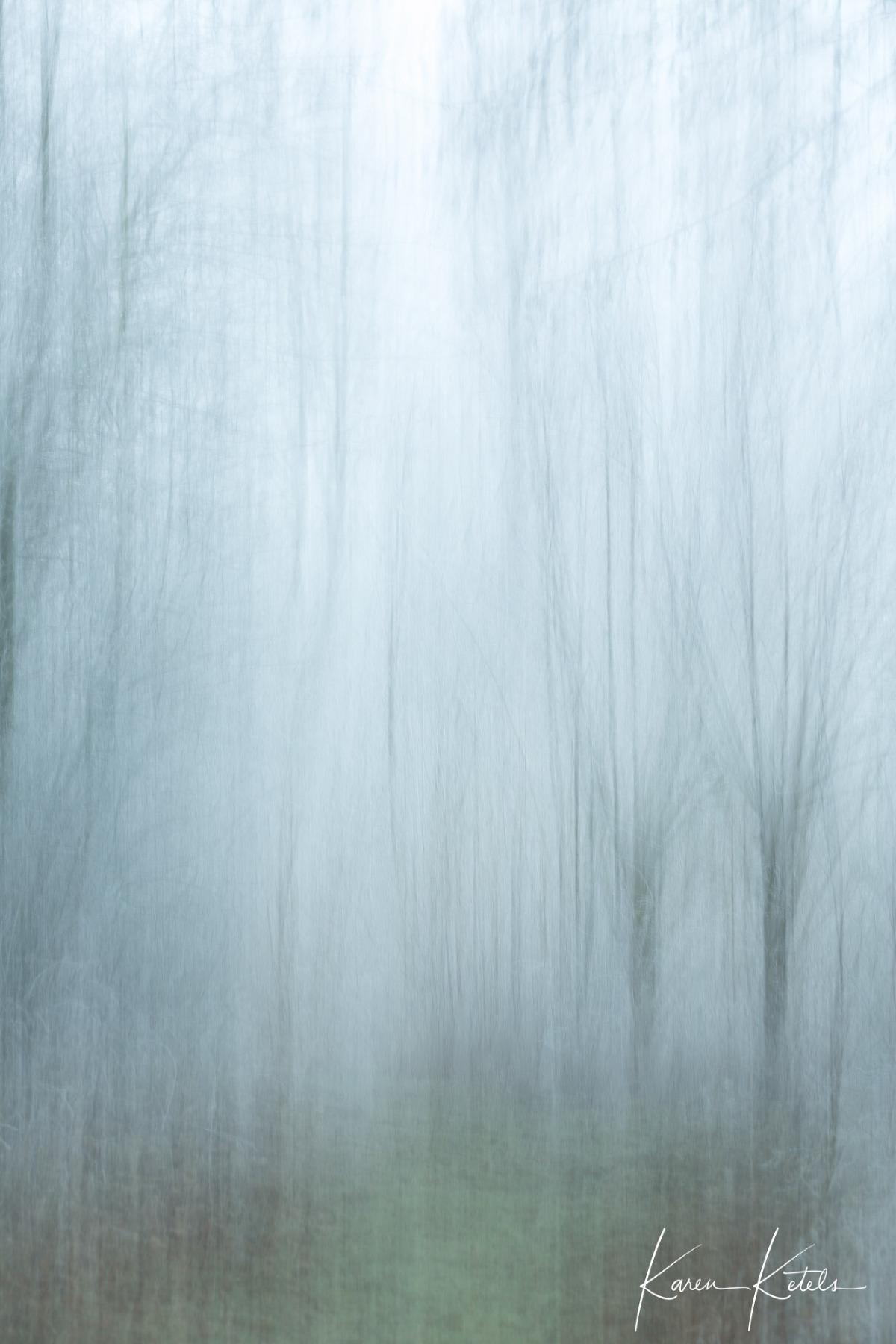 Fine art willows in winter by Karen Ketels